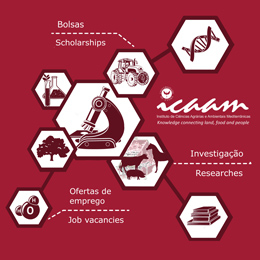 Scholarships | Job vacancies | Researches
