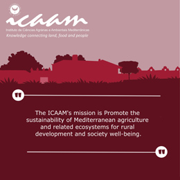 ICAAM Structure