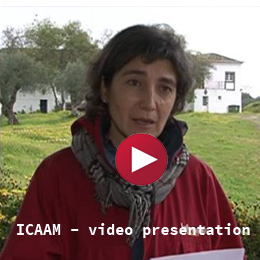 ICAAM - video presentation
